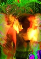 nachtansichten party